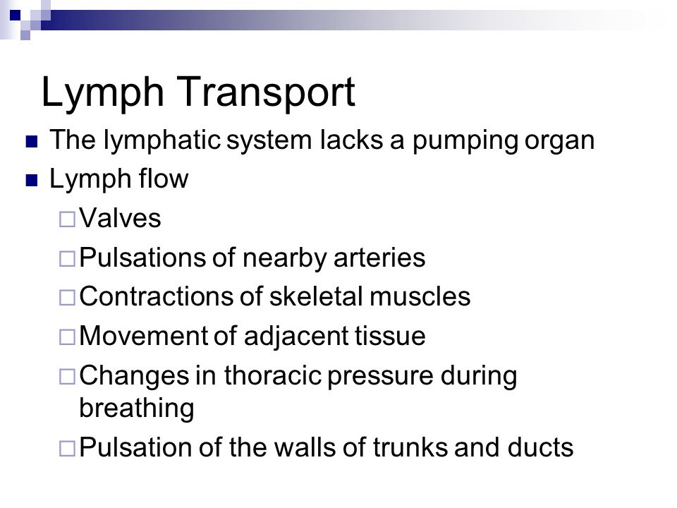 Lymph Transport The lymphatic system lacks a pumping organ Lymph flow