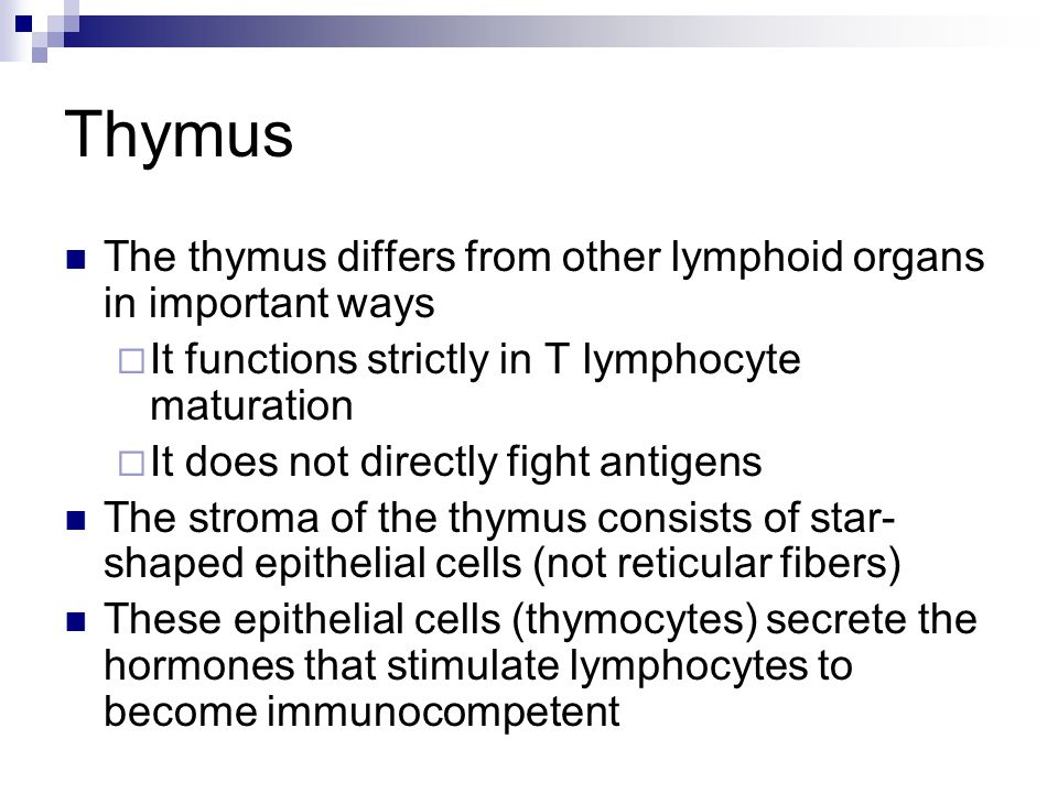 Thymus The thymus differs from other lymphoid organs in important ways