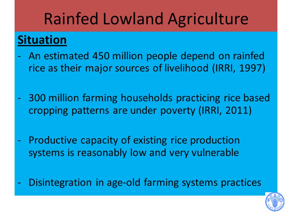 Rainfed Lowland Agriculture