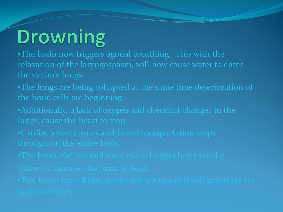 Drowning The brain now triggers agonal breathing. This with the relaxation of the laryngospasm, will now cause water to enter the victim's lungs.