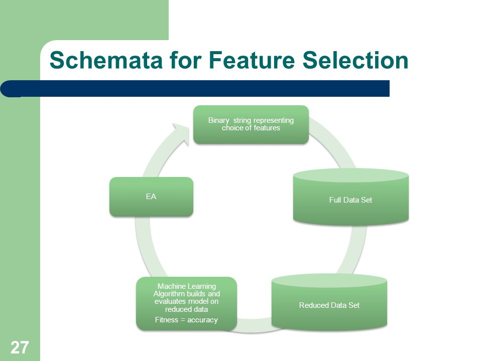 Schemata for Feature Selection