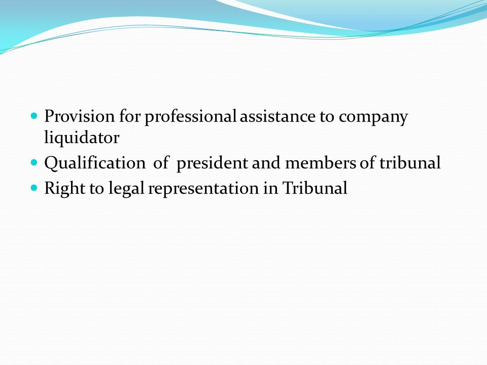 Provision for professional assistance to company liquidator
