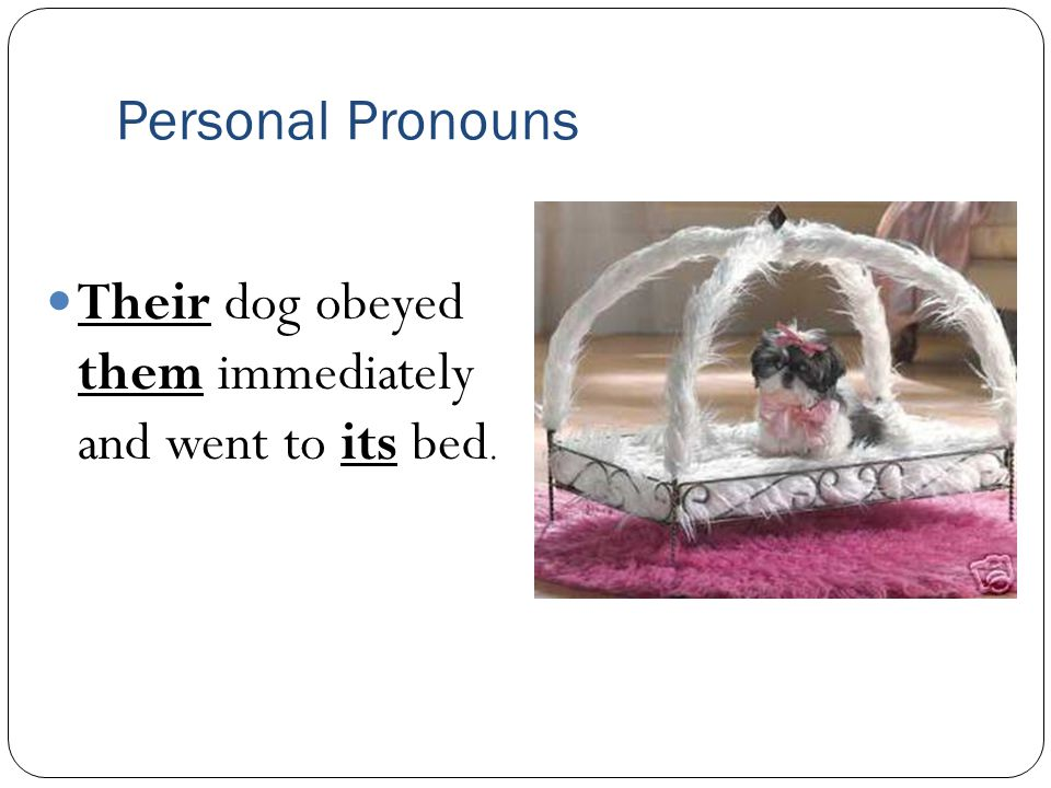 Personal Pronouns Their dog obeyed them immediately and went to its bed.