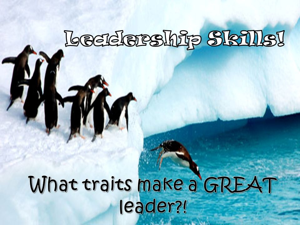 Leadership Skills! What traits make a GREAT leader !
