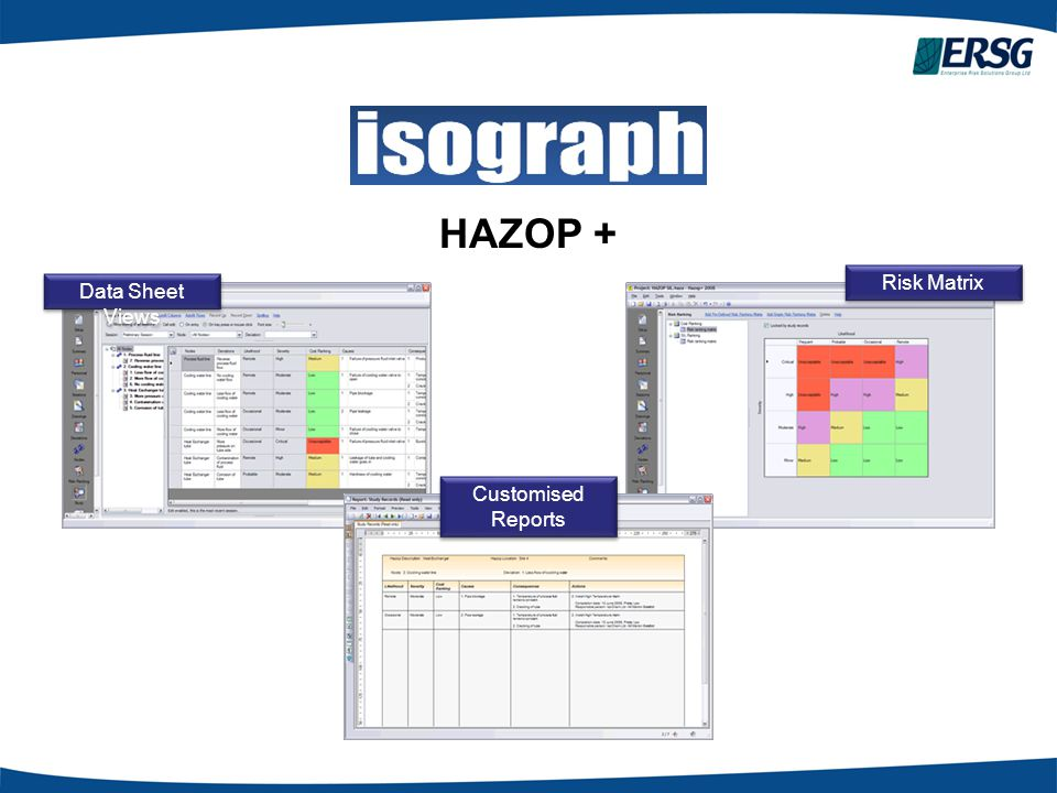 HAZOP + Risk Matrix Data Sheet Views Customised Reports