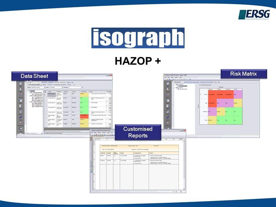 HAZOP + Risk Matrix Data Sheet Views Customised Reports