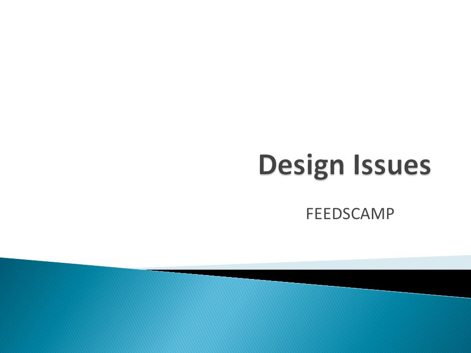 Design Issues FEEDSCAMP