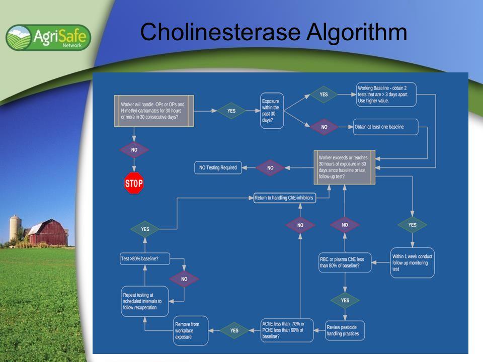 Cholinesterase Algorithm