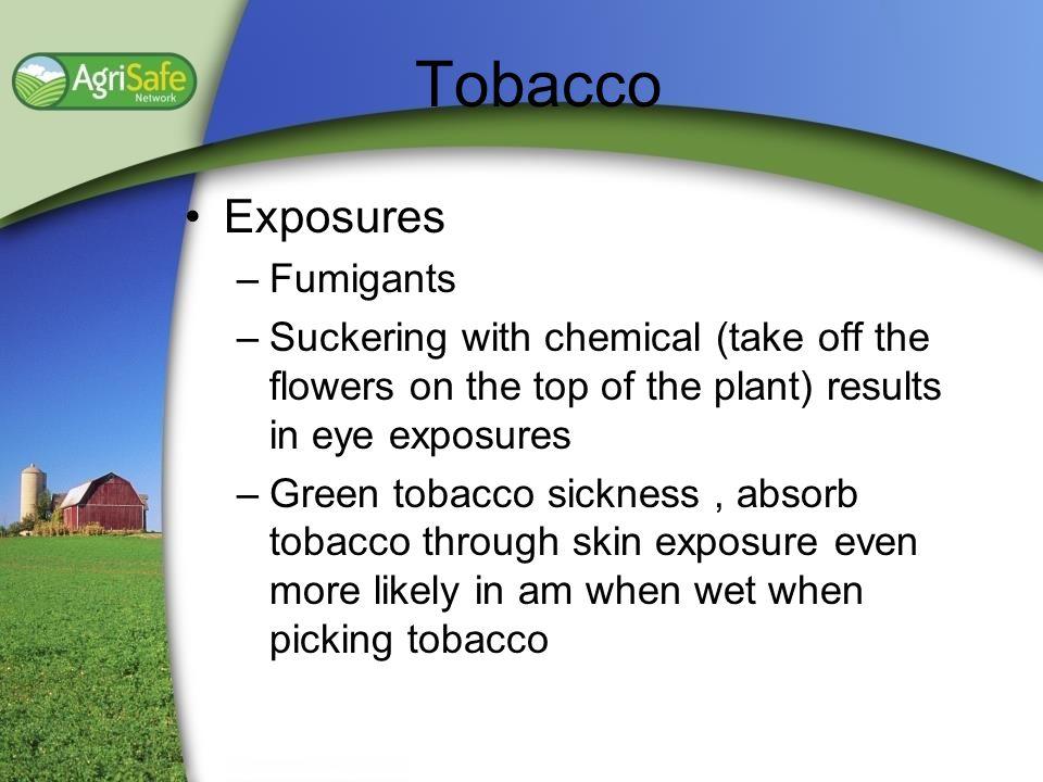 Tobacco Exposures Fumigants