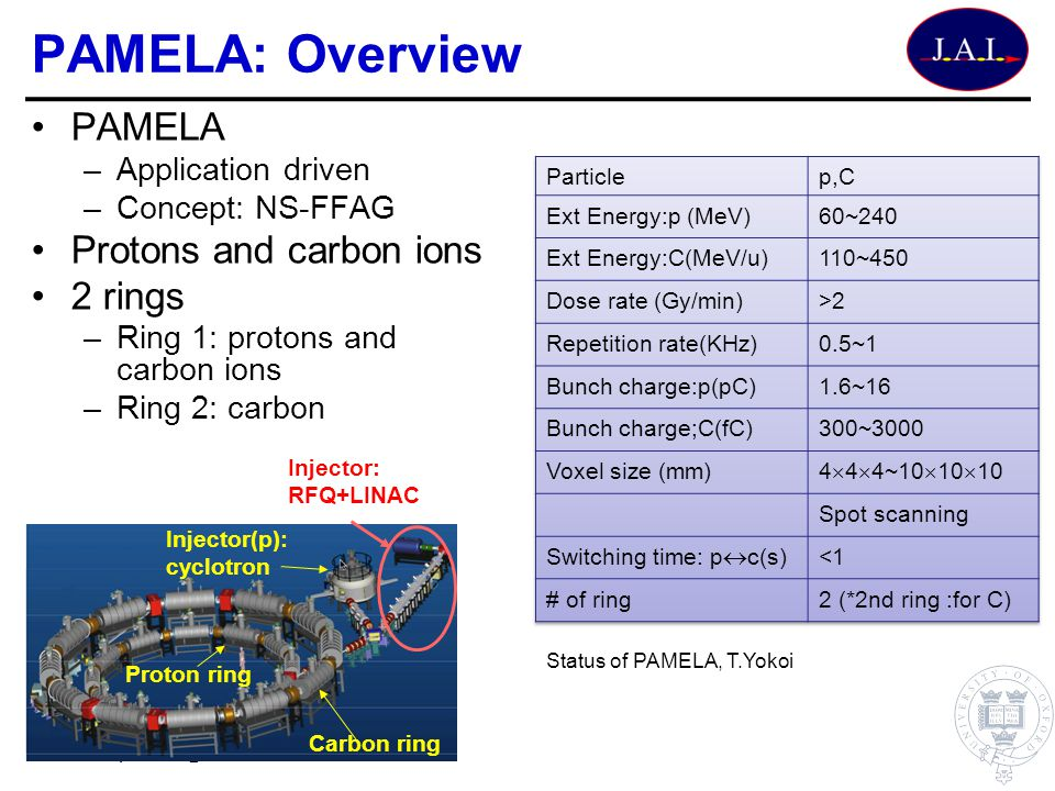 PAMELA: Overview PAMELA Protons and carbon ions 2 rings