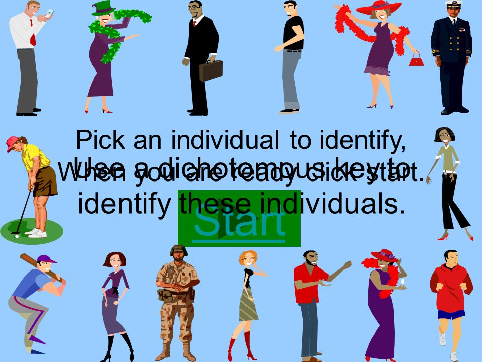 Use a dichotomous key to identify these individuals.