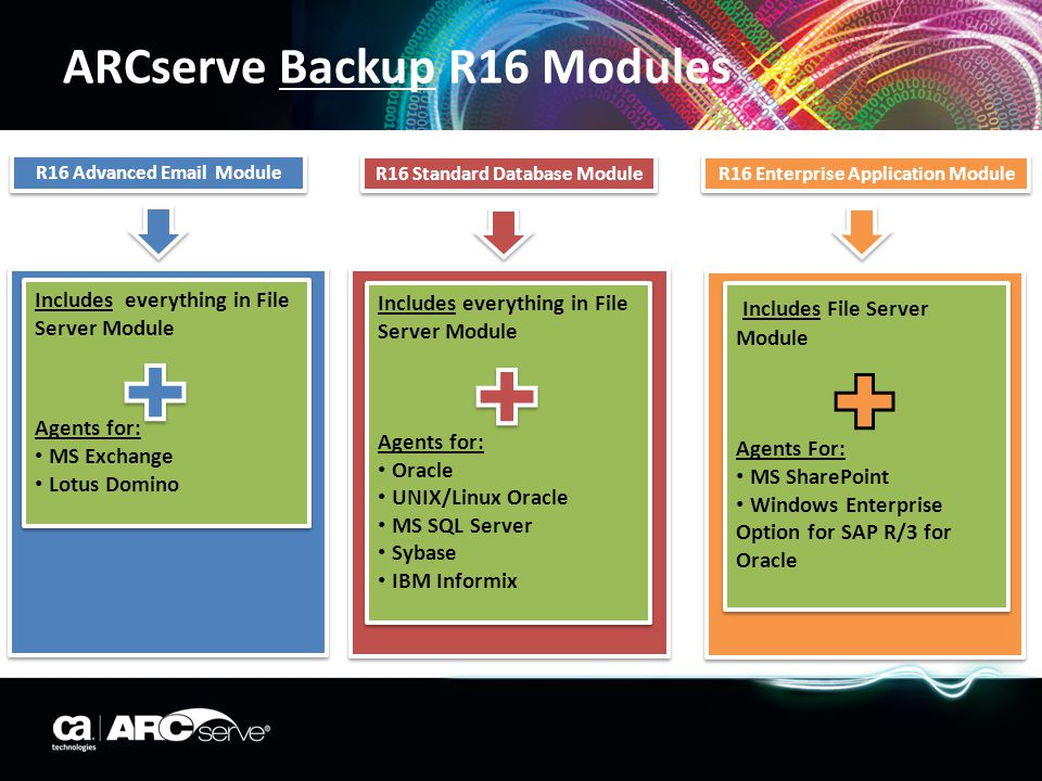 ARCserve Backup R16 Modules