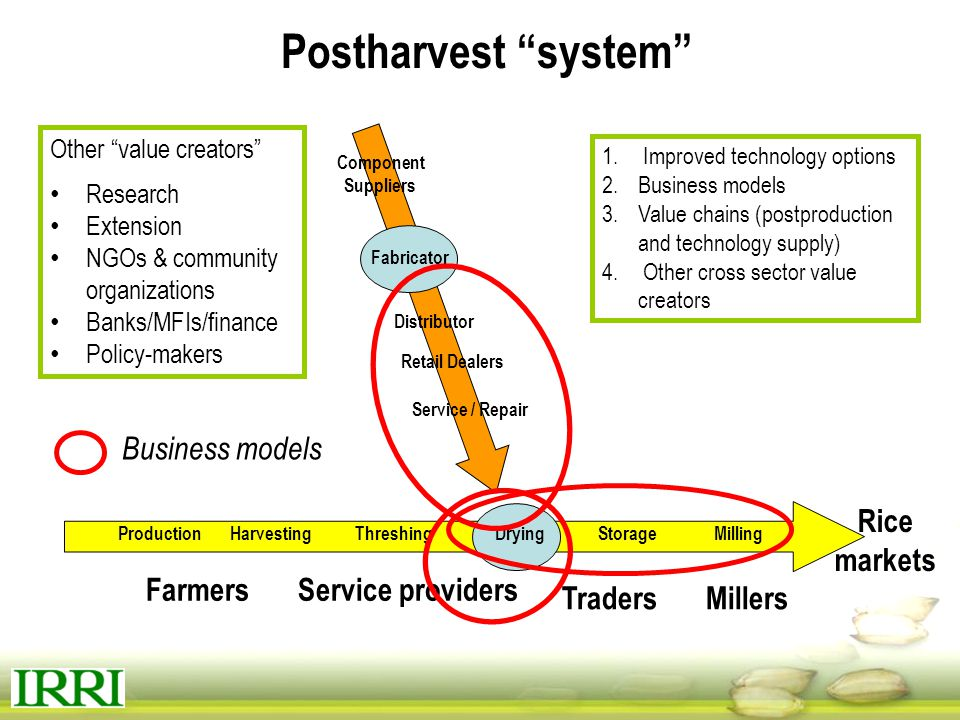 Postharvest system Business models Rice markets Farmers