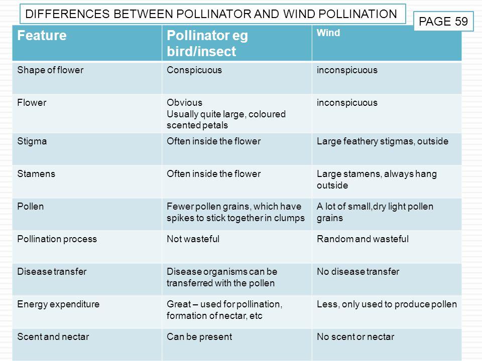 Pollinator eg bird/insect