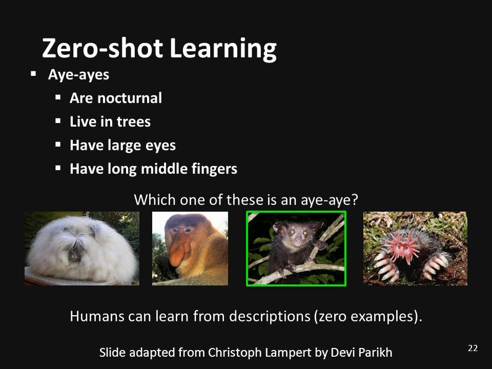 Zero-shot Learning Aye-ayes Are nocturnal Live in trees