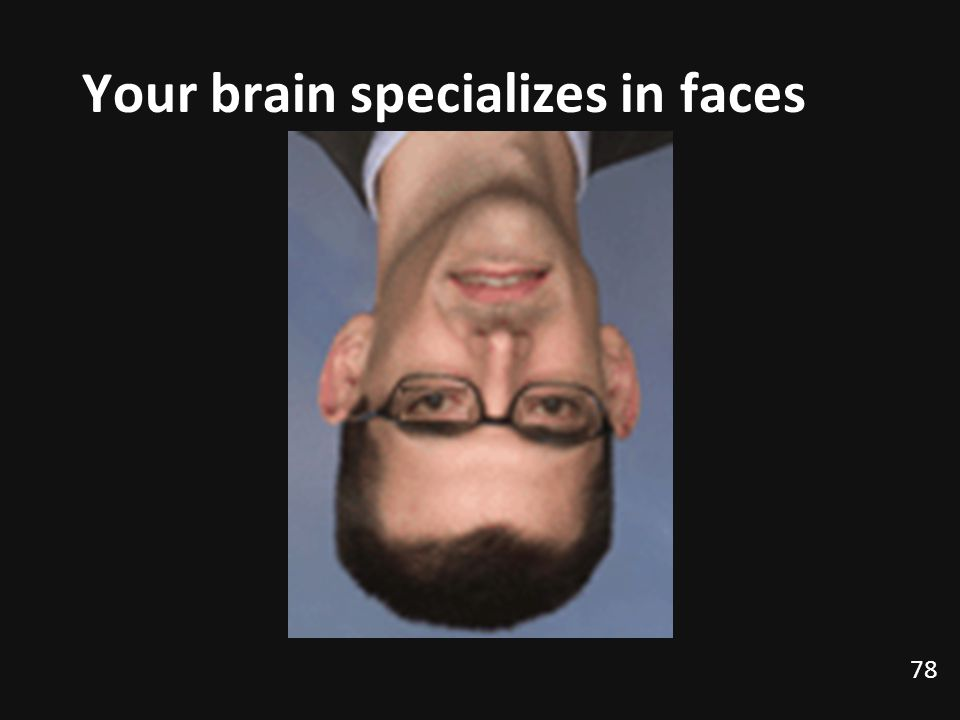 Your brain specializes in faces