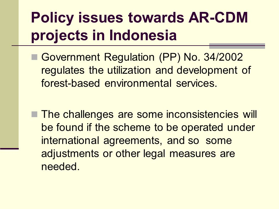 Policy issues towards AR-CDM projects in Indonesia