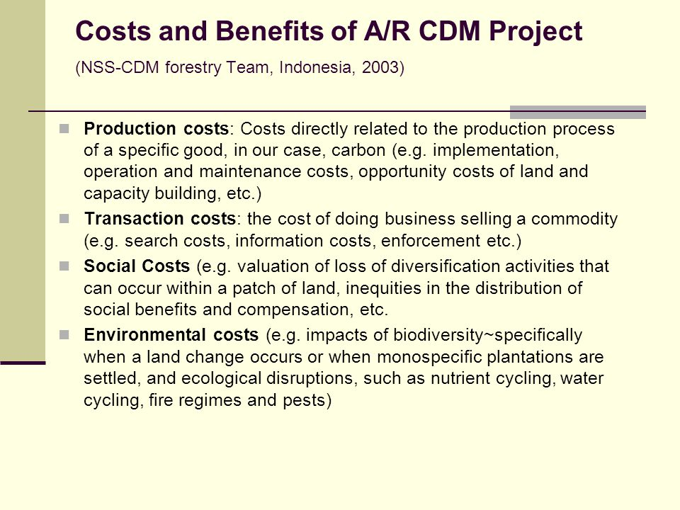 Costs and Benefits of A/R CDM Project (NSS-CDM forestry Team, Indonesia, 2003)