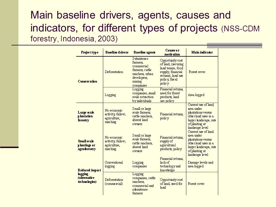 Main baseline drivers, agents, causes and indicators, for different types of projects (NSS-CDM forestry, Indonesia, 2003)