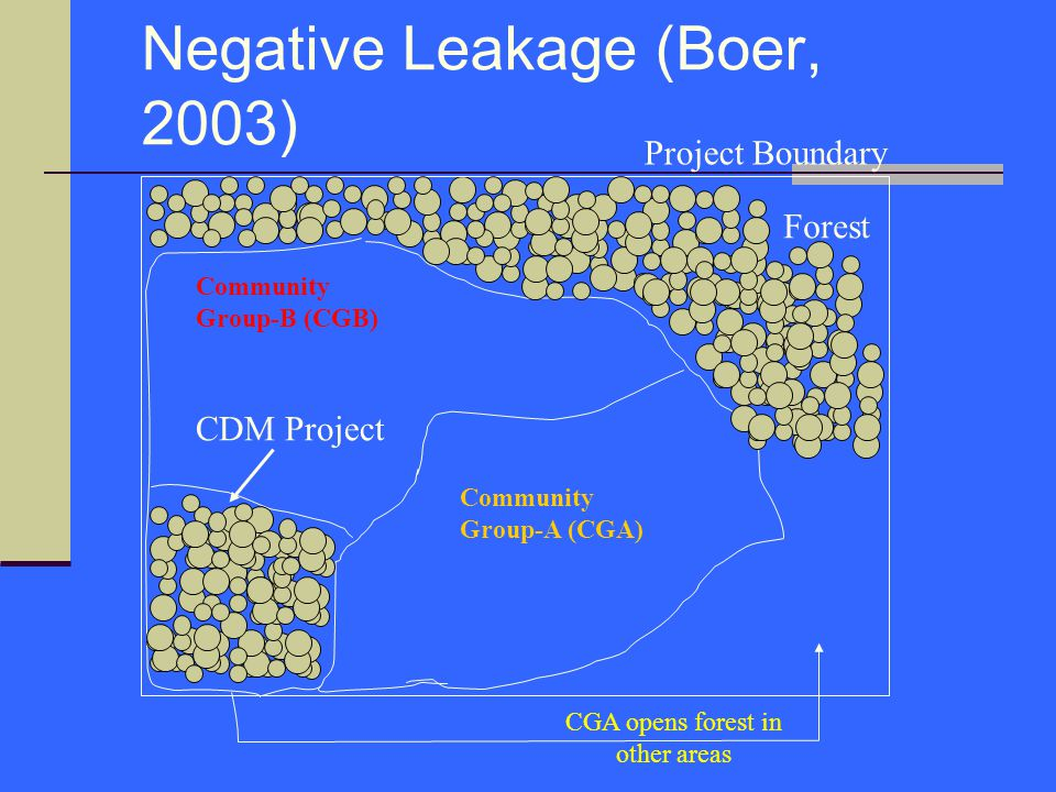 Negative Leakage (Boer, 2003)