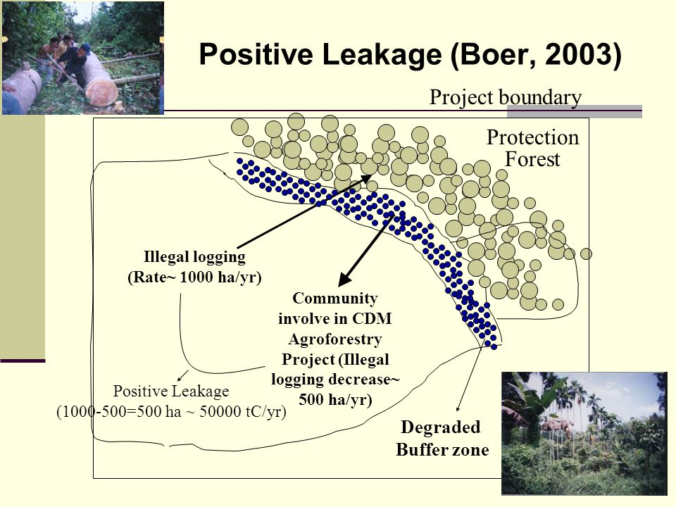 Positive Leakage (Boer, 2003)