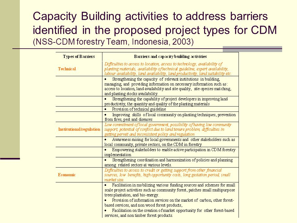 Capacity Building activities to address barriers identified in the proposed project types for CDM (NSS-CDM forestry Team, Indonesia, 2003)