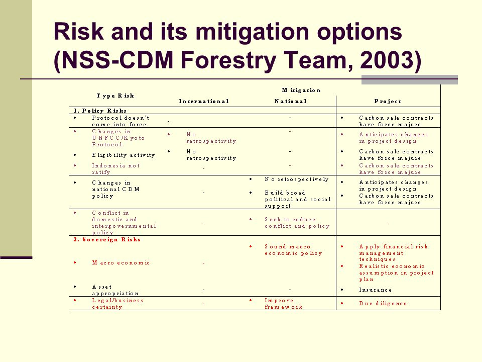 Risk and its mitigation options (NSS-CDM Forestry Team, 2003)