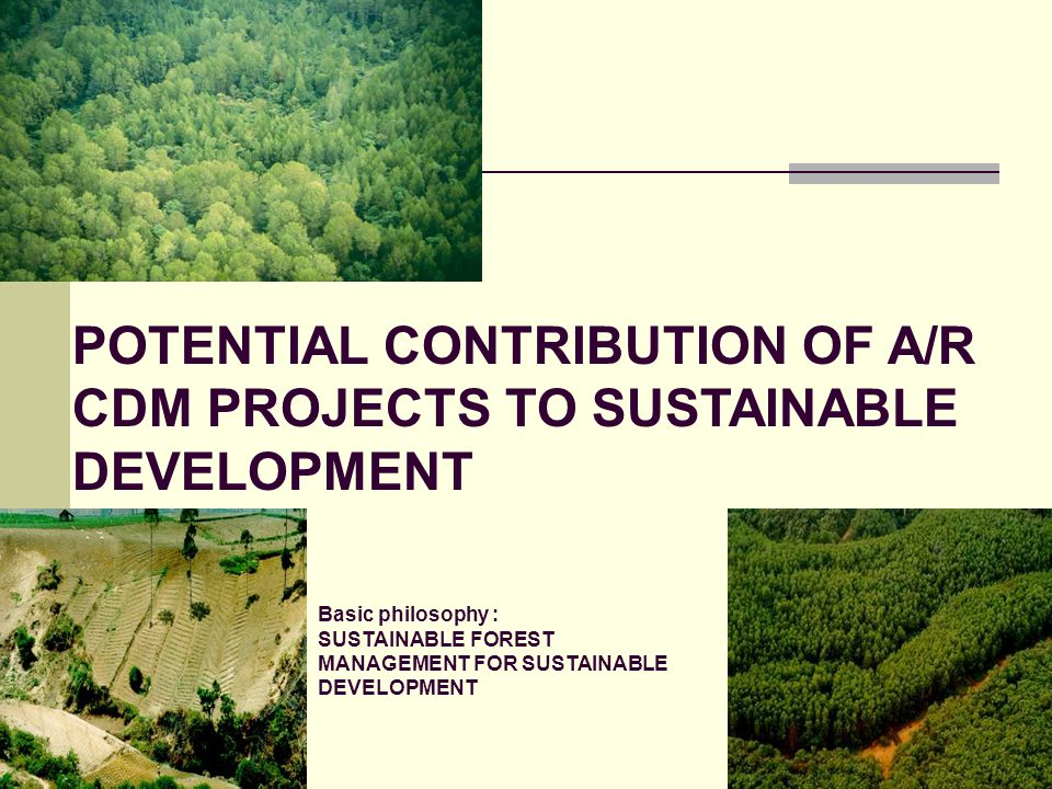 POTENTIAL CONTRIBUTION OF A/R CDM PROJECTS TO SUSTAINABLE DEVELOPMENT