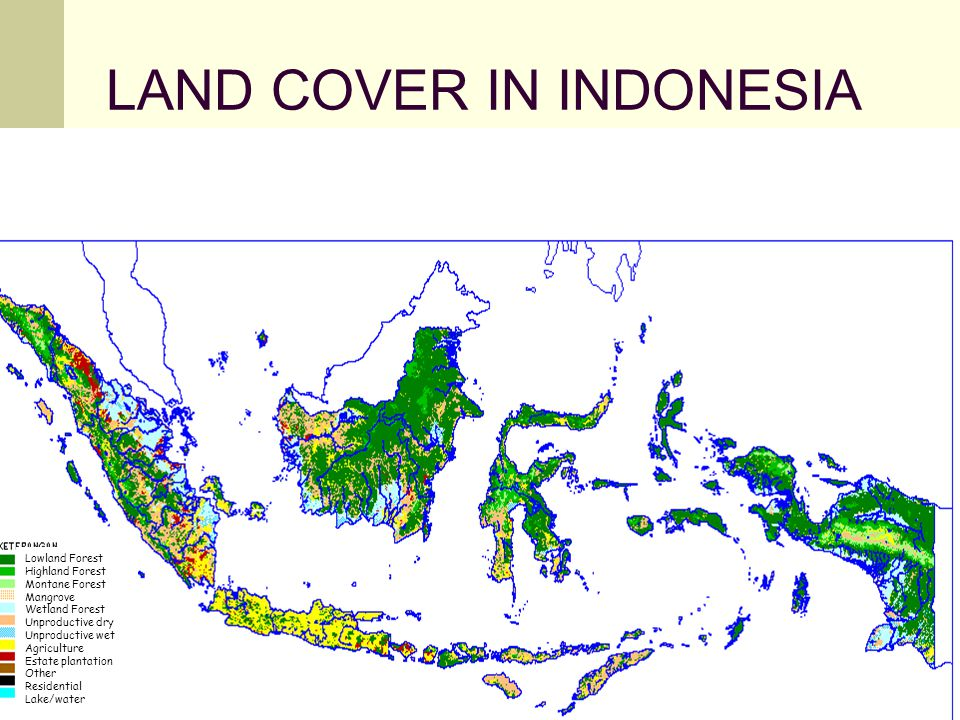 LAND COVER IN INDONESIA