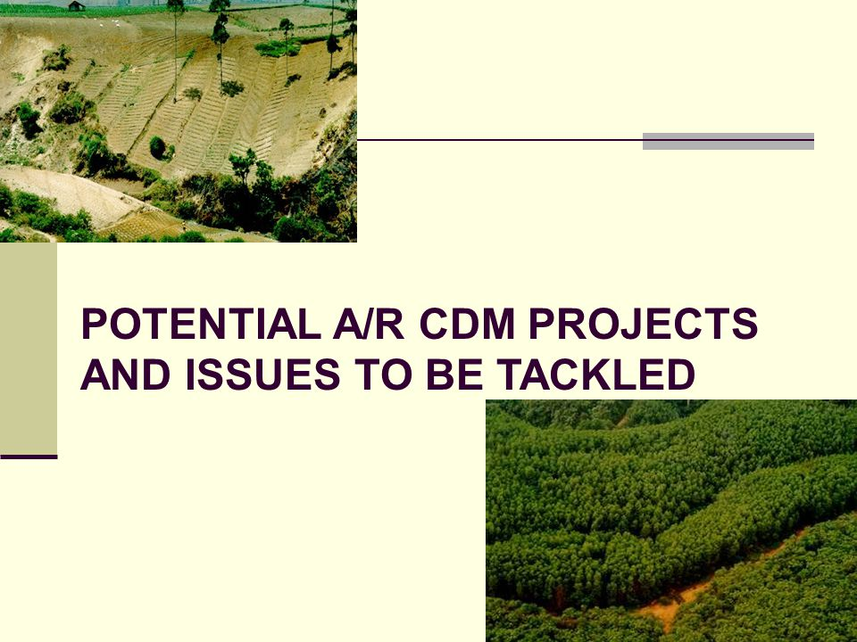 POTENTIAL A/R CDM PROJECTS AND ISSUES TO BE TACKLED
