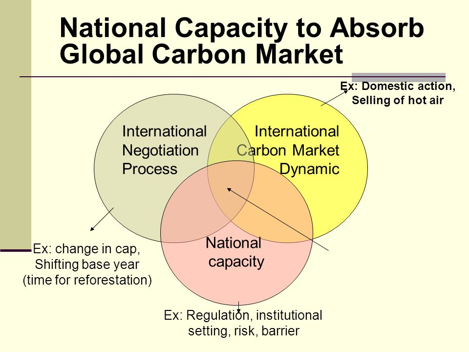 National Capacity to Absorb Global Carbon Market