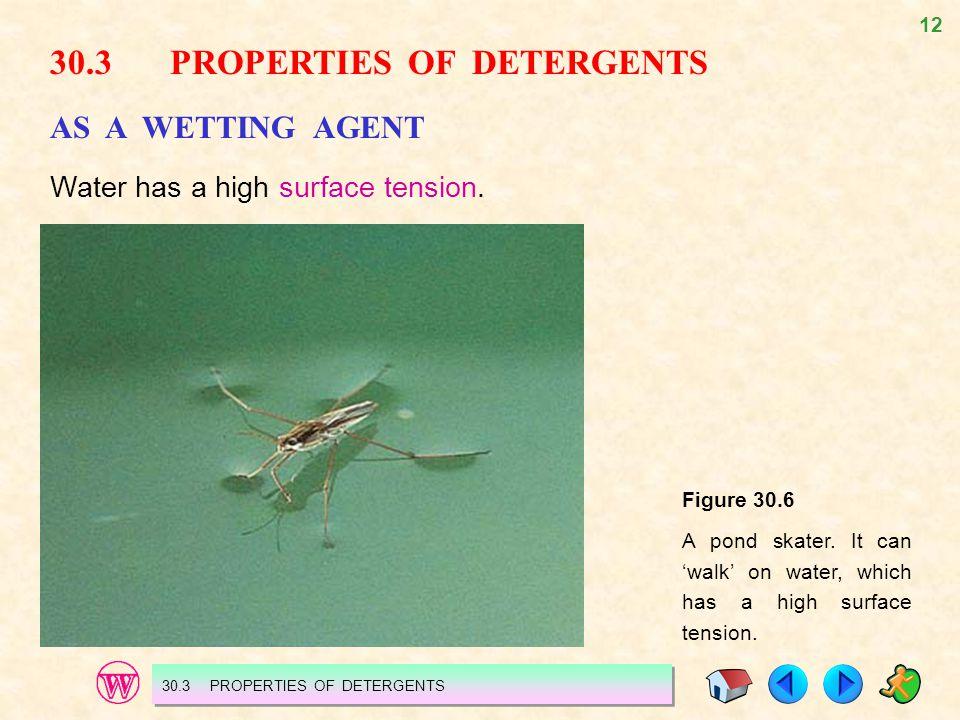 30.3 PROPERTIES OF DETERGENTS