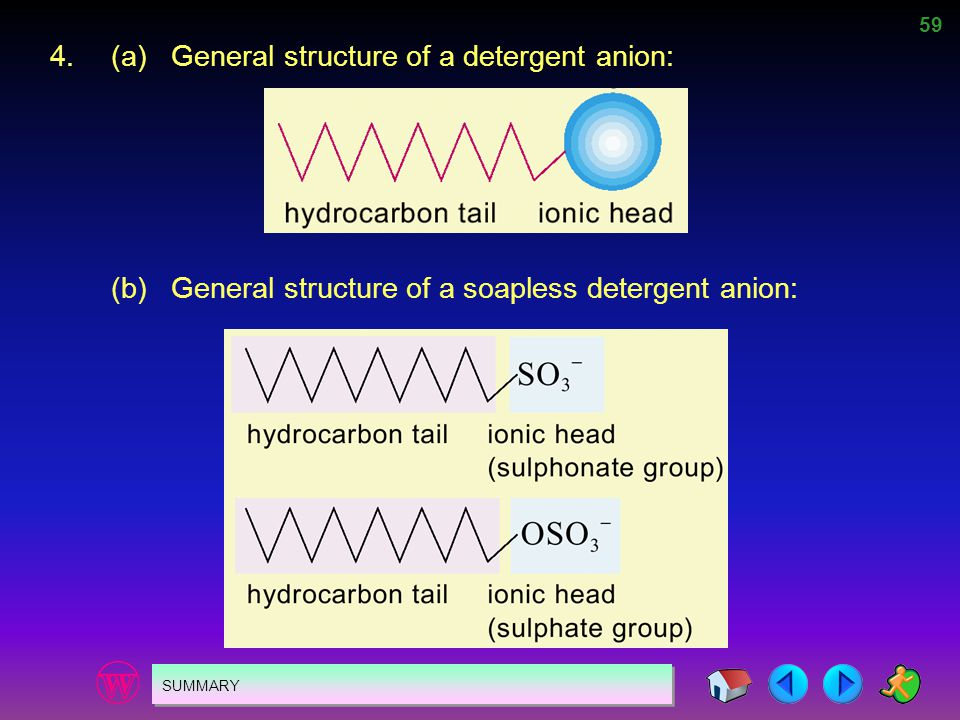 4. (a) General structure of a detergent anion: