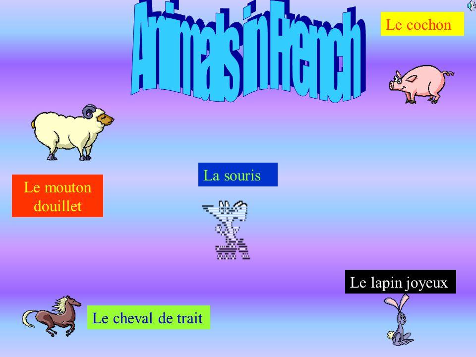 Animals in French Le cochon La souris Le mouton douillet