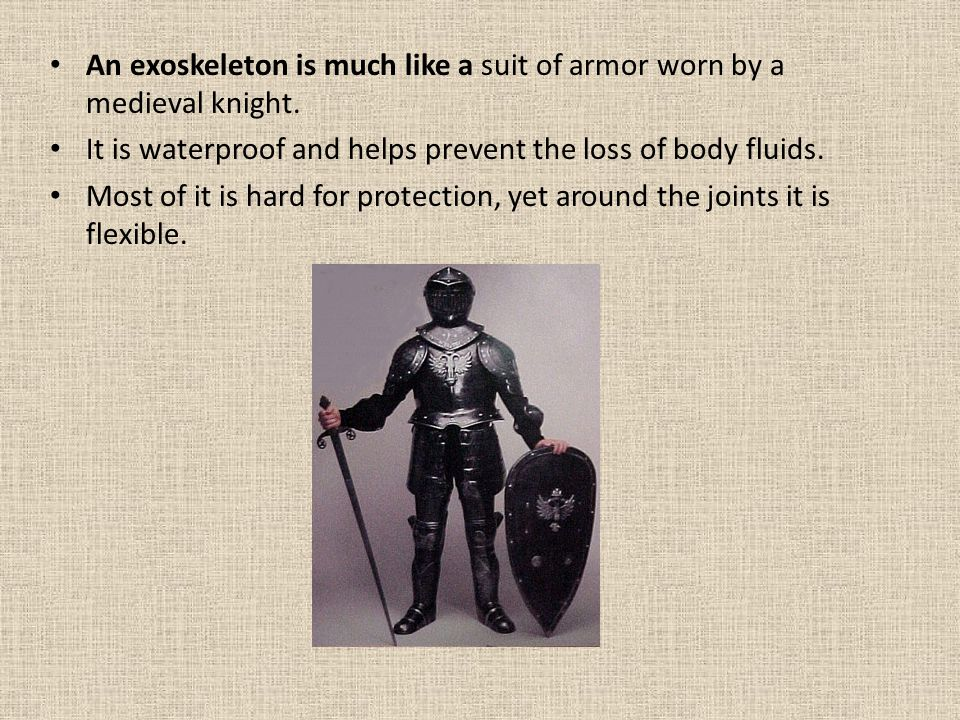 An exoskeleton is much like a suit of armor worn by a medieval knight.