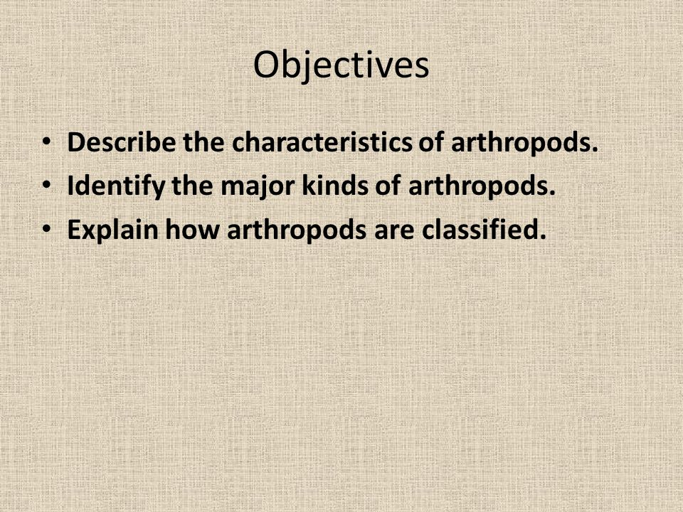 Objectives Describe the characteristics of arthropods.