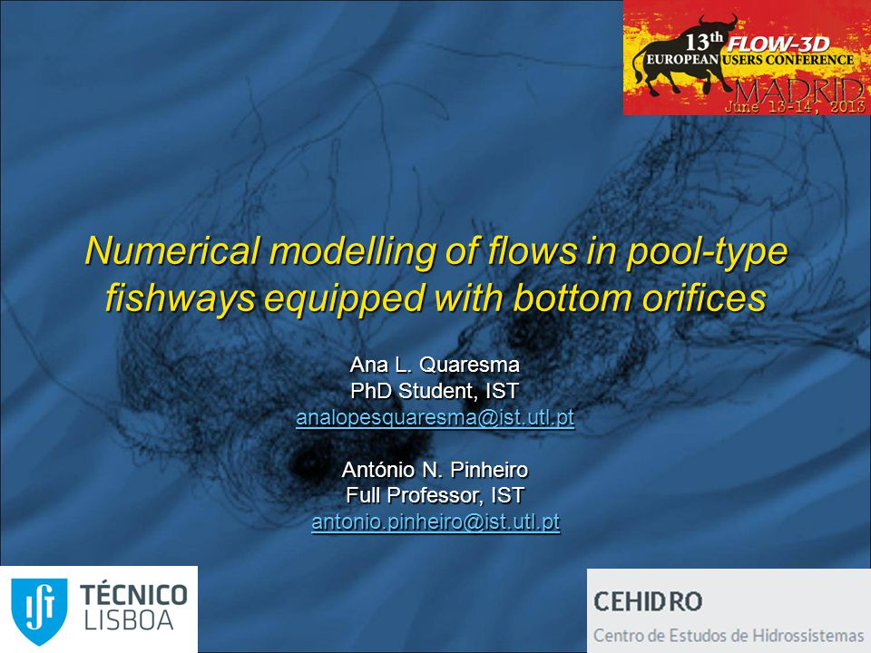 Numerical modelling of flows in pool-type fishways equipped with bottom orifices