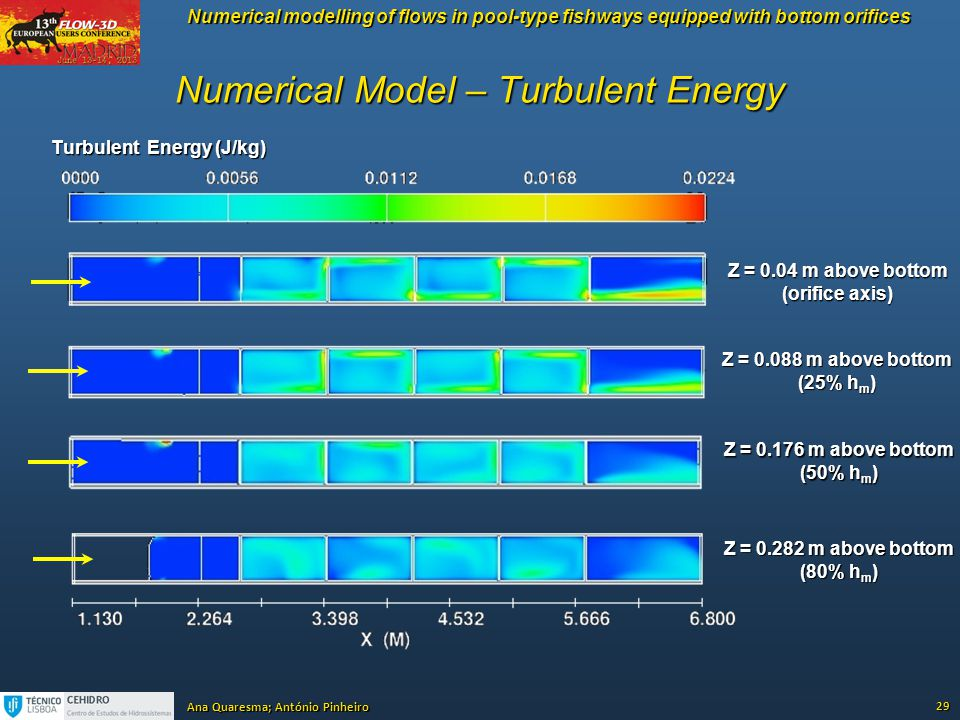 Numerical Model – Turbulent Energy