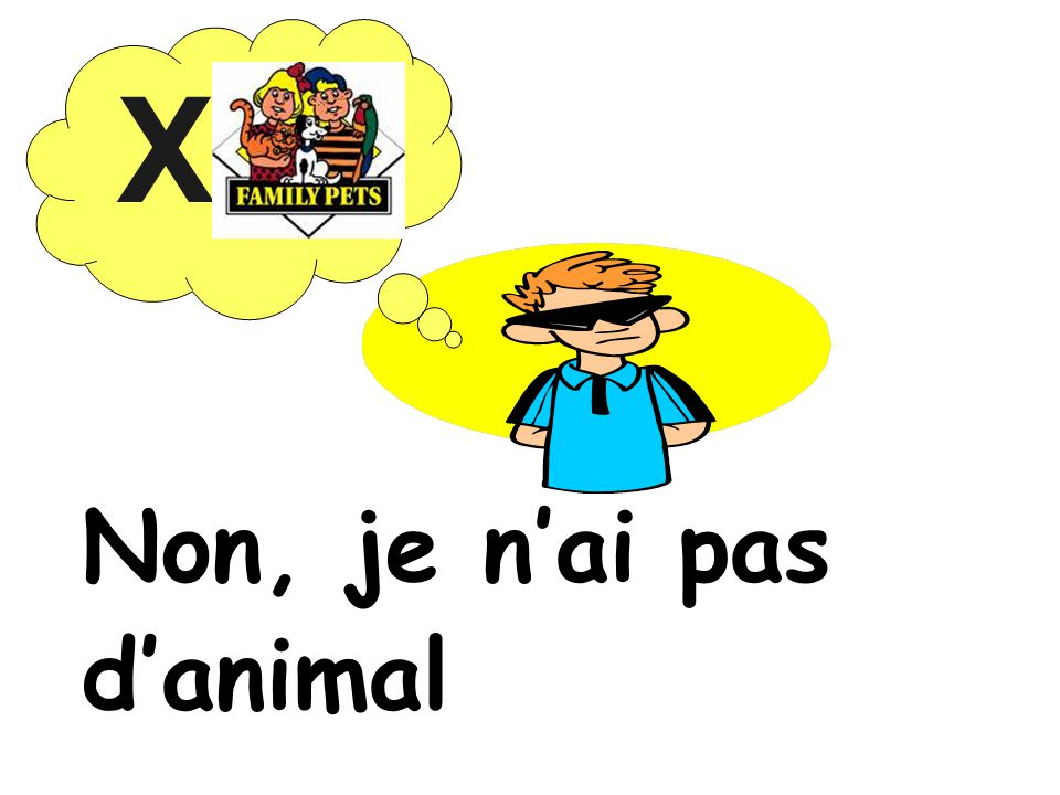 X Non, je n'ai pas d'animal