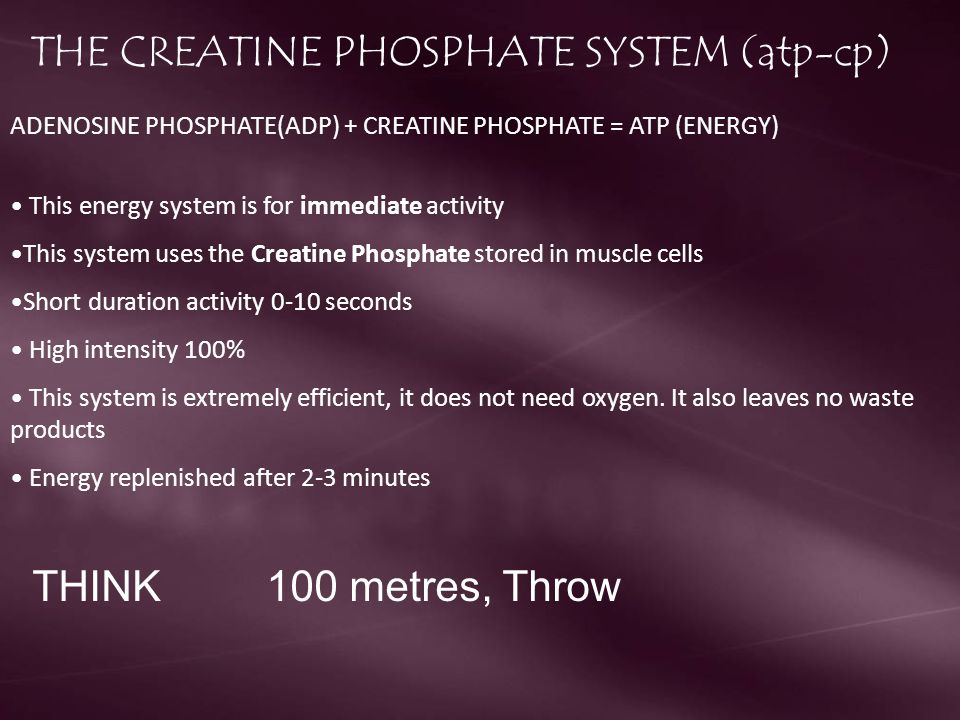 THE CREATINE PHOSPHATE SYSTEM (atp-cp)