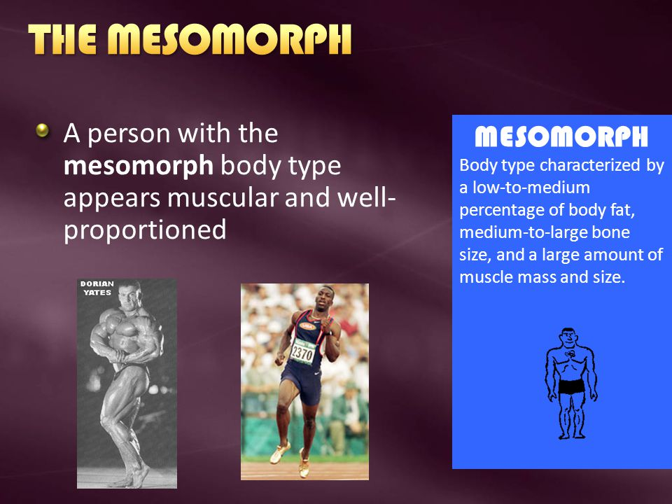 THE MESOMORPH A person with the mesomorph body type appears muscular and well-proportioned. MESOMORPH.