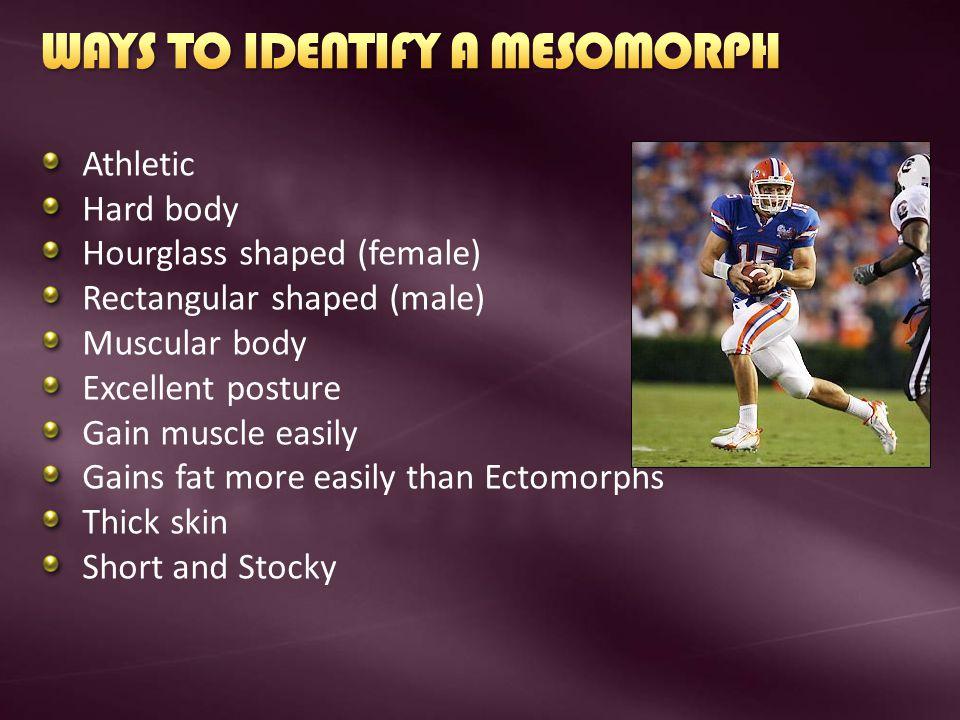 WAYS TO IDENTIFY A MESOMORPH