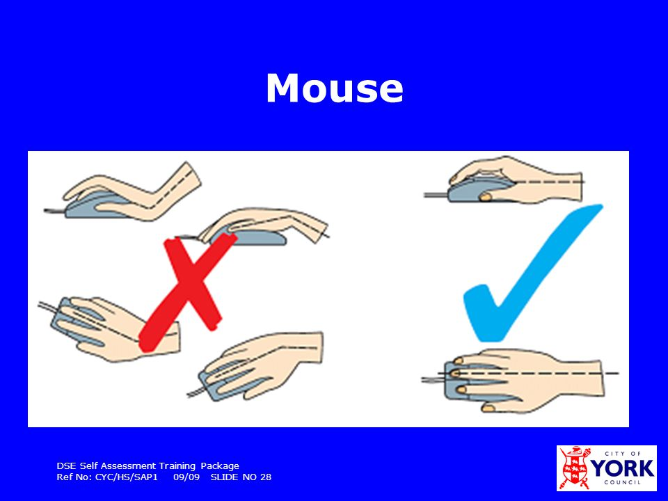 Mouse DSE Self Assessment Training Package