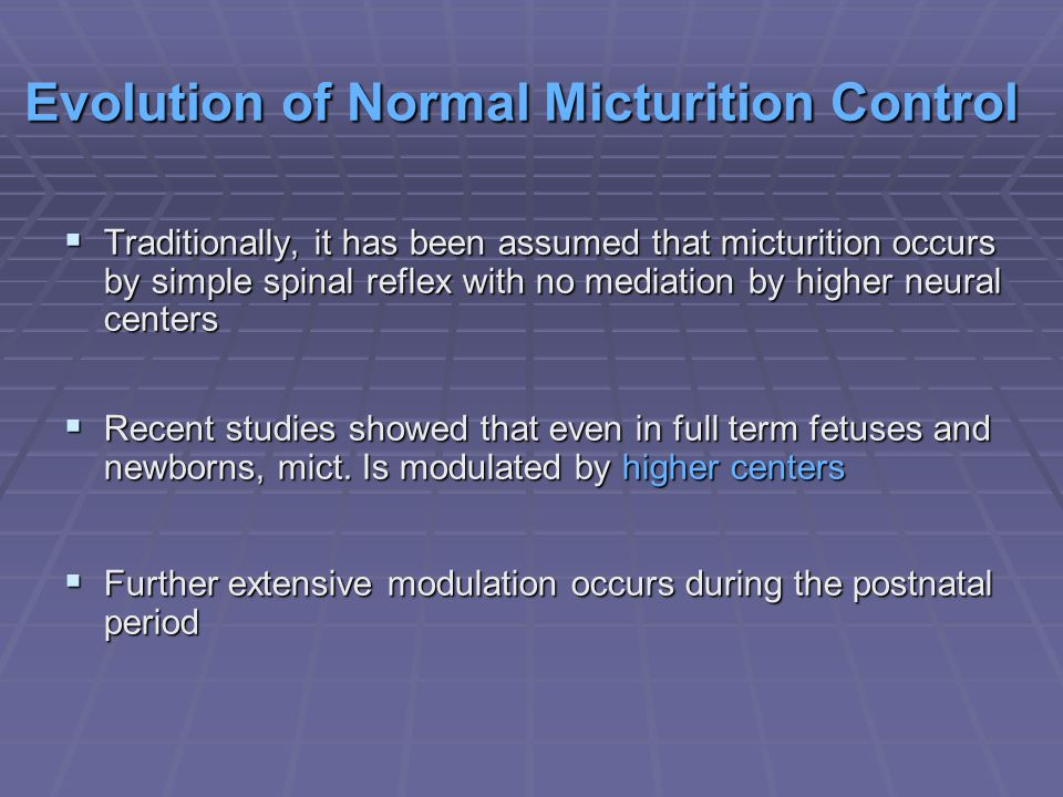 Evolution of Normal Micturition Control