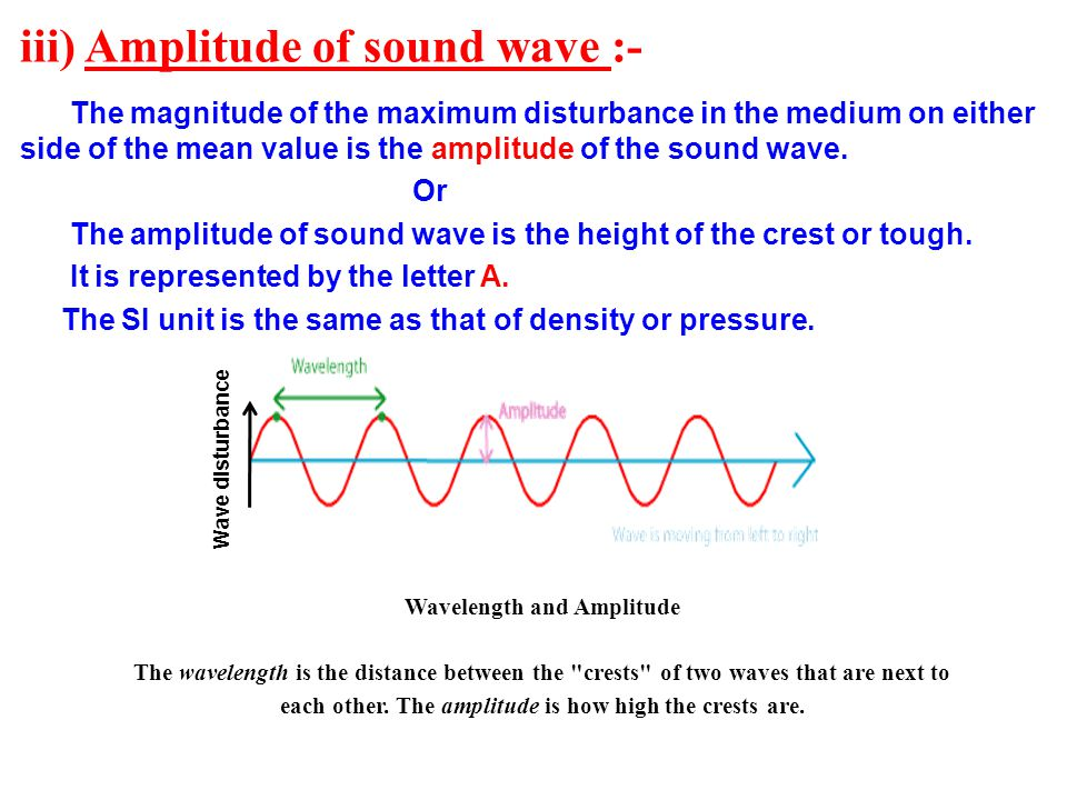 iii) Amplitude of sound wave :-