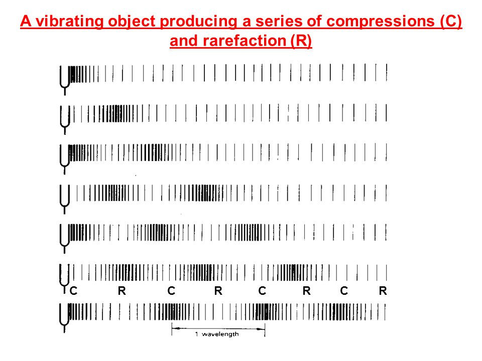 A vibrating object producing a series of compressions (C) and rarefaction (R)