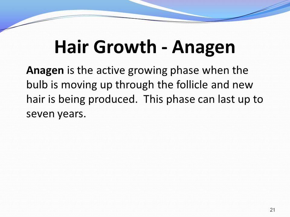 Hair Growth - Anagen