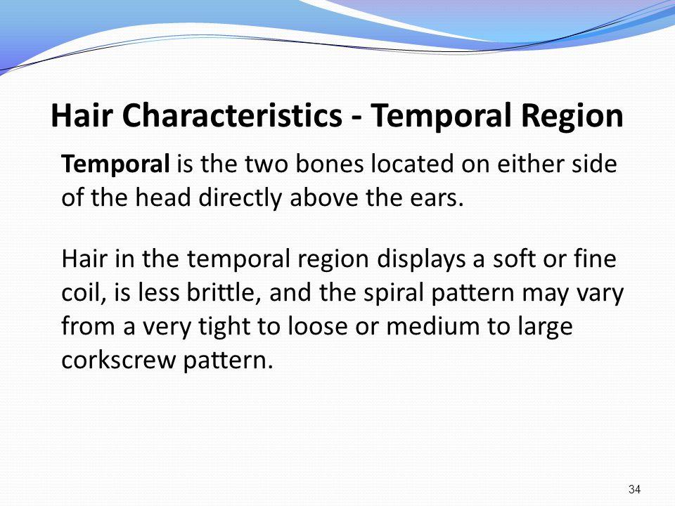 Hair Characteristics - Temporal Region