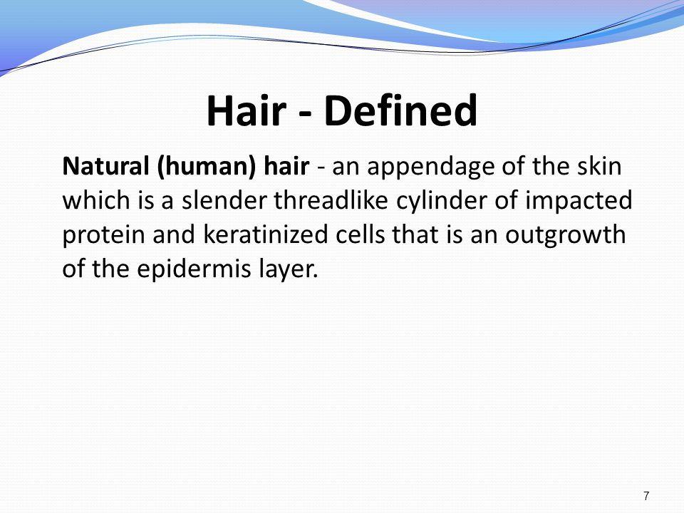 Hair - Defined