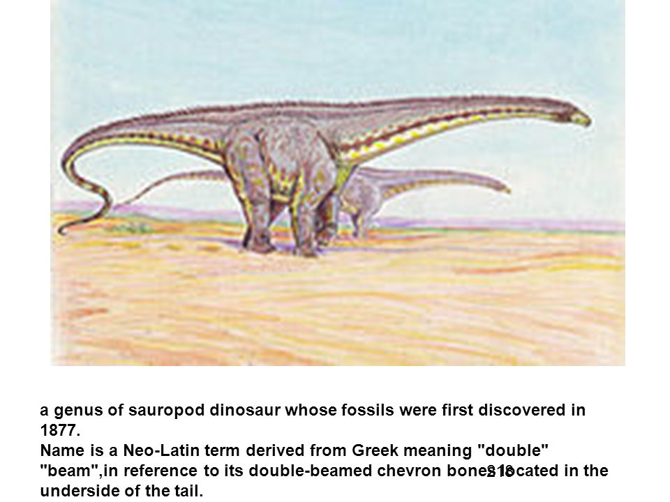 a genus of sauropod dinosaur whose fossils were first discovered in 1877.